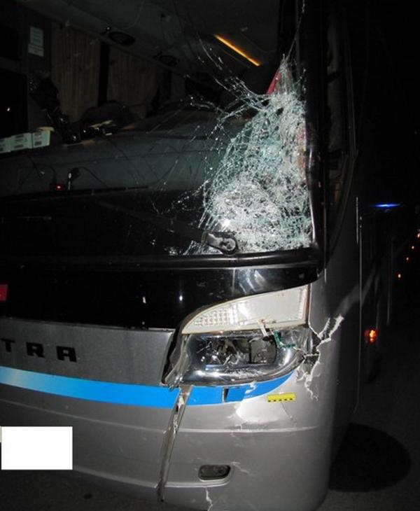 на м1 автобус сбил пешехода